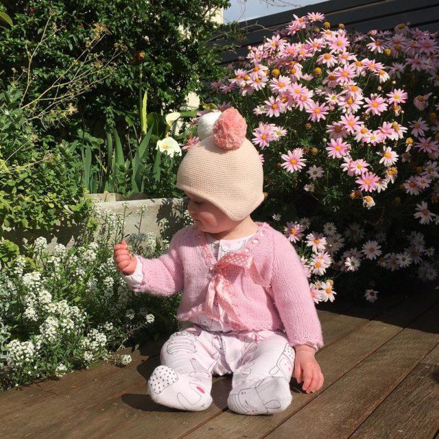 Spring has sprung in the Montacute garden