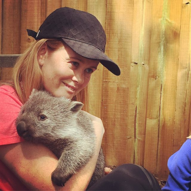 Snuggly cuddles with baby Willow at bonorong wildlife sanctuary